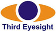Third Eyesight - Management Consultants, retail, consumer goods, business strategy, marketing, supply chain, India